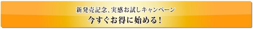 [初回限定 980円] ネルアップ